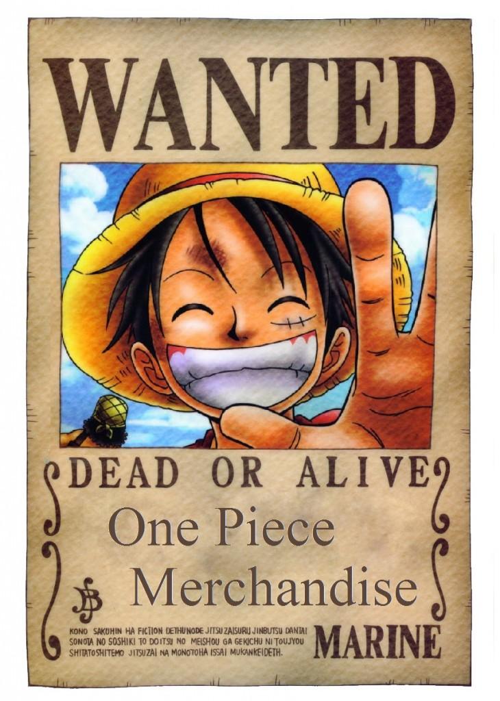 One Piece Merchandise