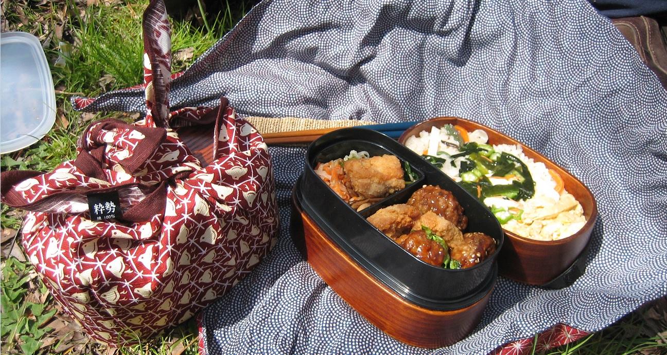 furoshiki picnic