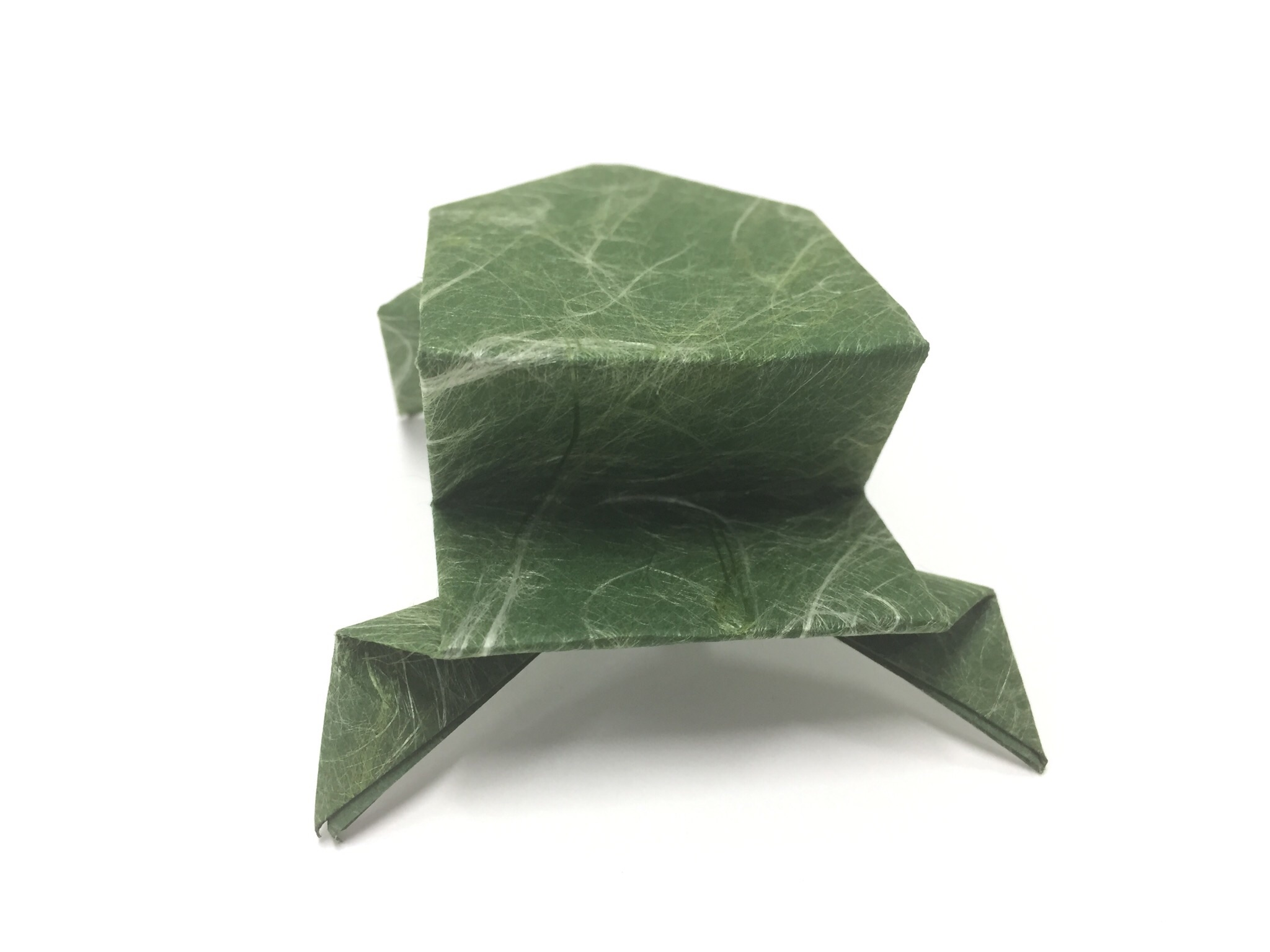 You just learned how to make an origami frog!