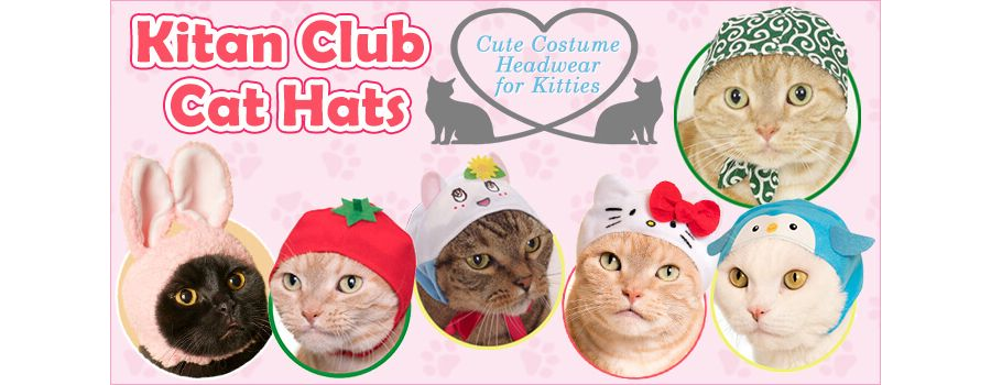 Kitan Club Cat Hats: Cute Costume Headwear for Kitties