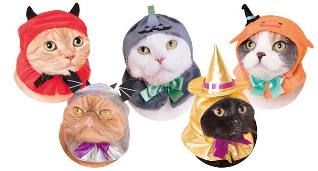 Kitan Club Cat Hats Costume Halloween
