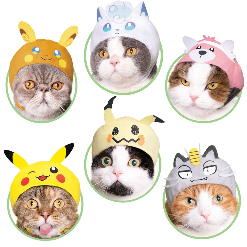 Pokemon Kitties 2