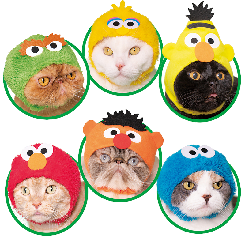 Sesame Street Kitties