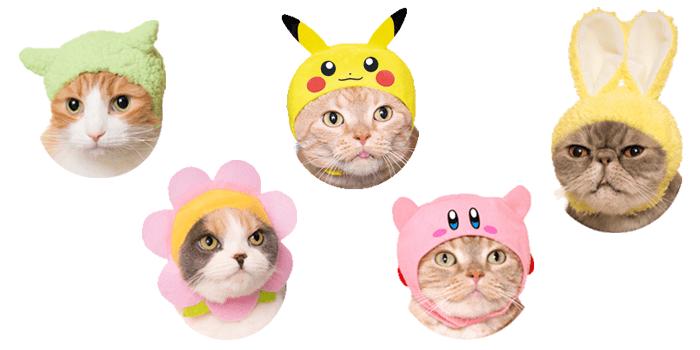 Kitty Hats