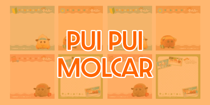 All About Pui Pui Molcar